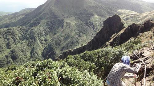 上半平山的稜線
