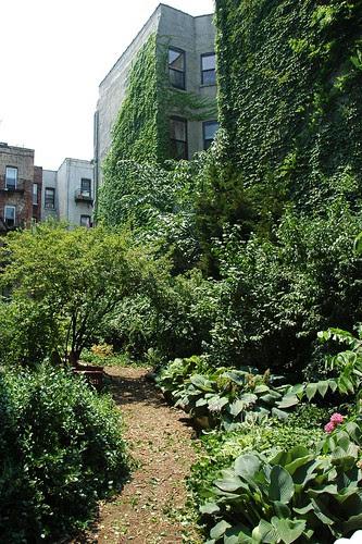Lincoln-Berkeley Community Garden