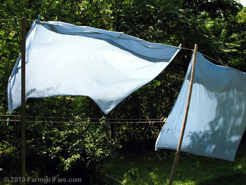cotton sheets drying on the line