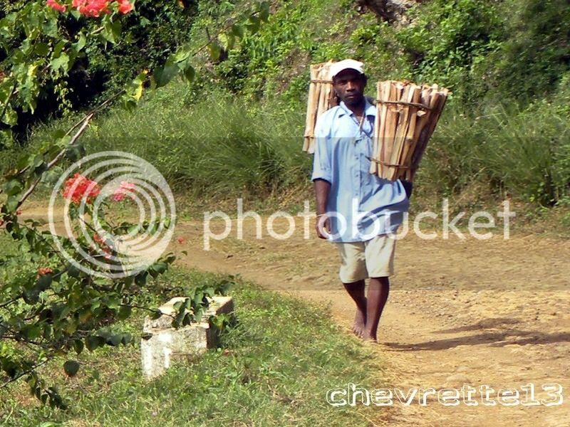 http://i1252.photobucket.com/albums/hh578/chevrette13/Madagascar/RSCN3079Copier_zpsb4340b06.jpg
