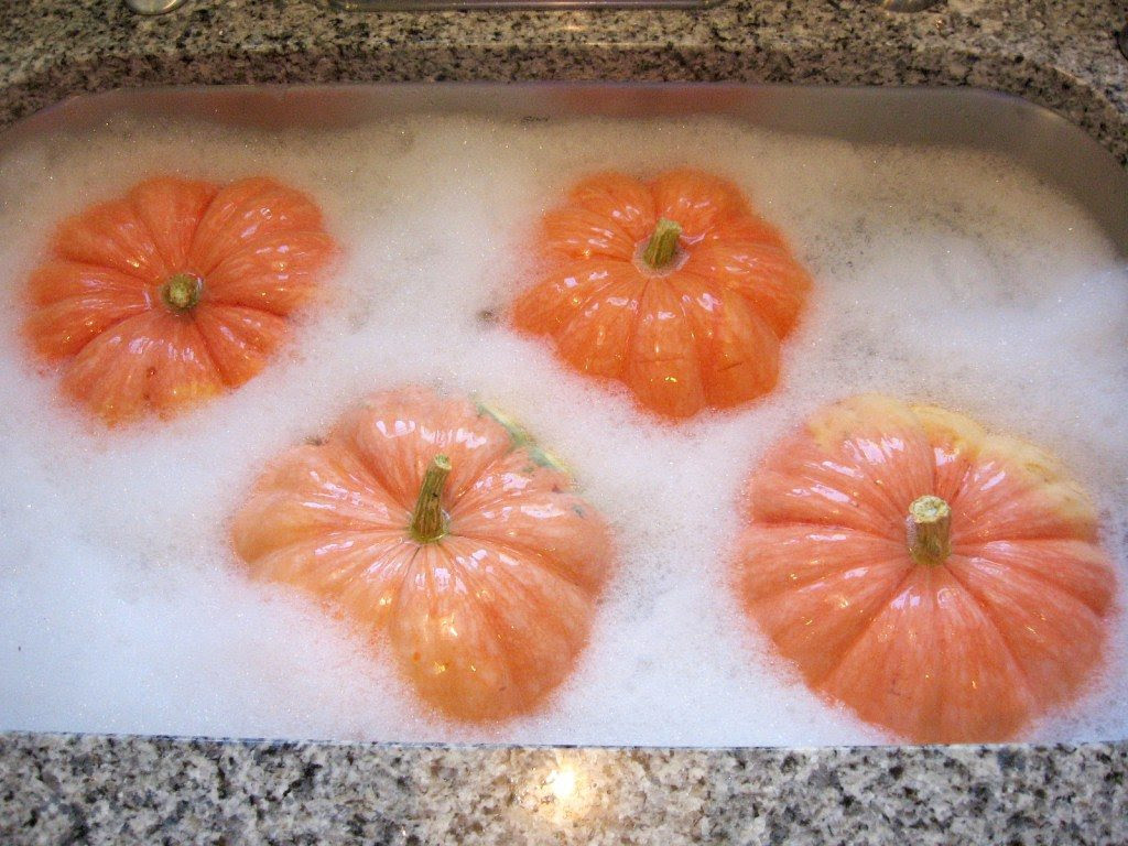 bathe-pumpkins