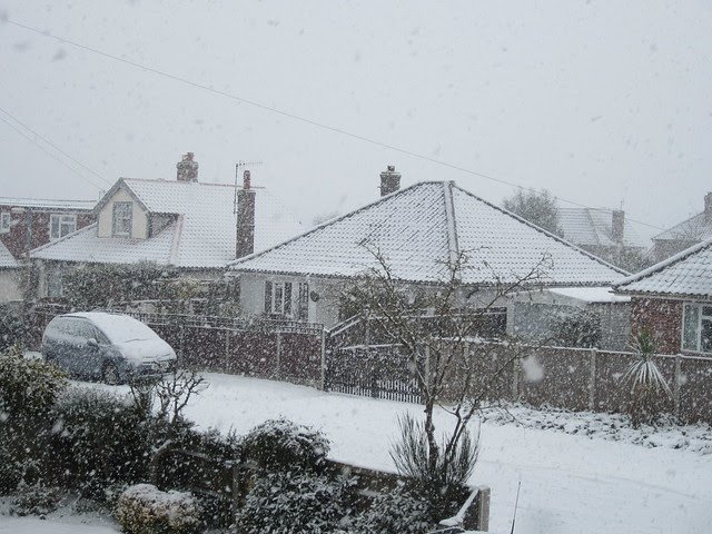 More snowy days Jan 2013 (8)
