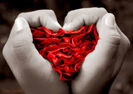 corazon-en-las-manos-amas-o-no-amas-siria-grandet