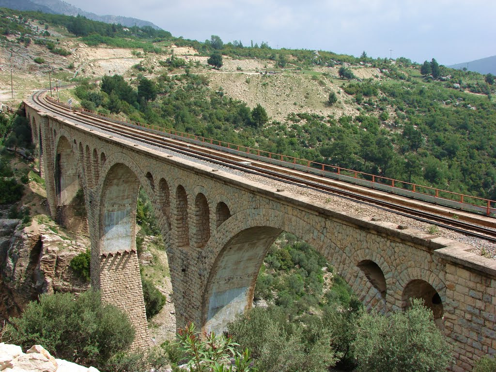 Varda Köprüsü-Adana