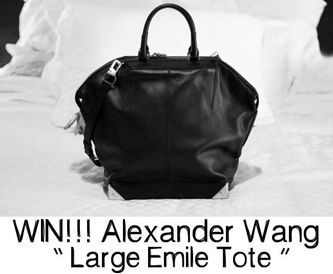Alexander Wang Large Emile Tote, Fashion bags
