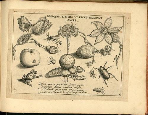 Archetypa studiaque patris - Joris Hoefnagel (1592)