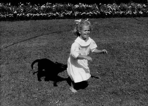 Lato Solliden, Madeleine i jej królik