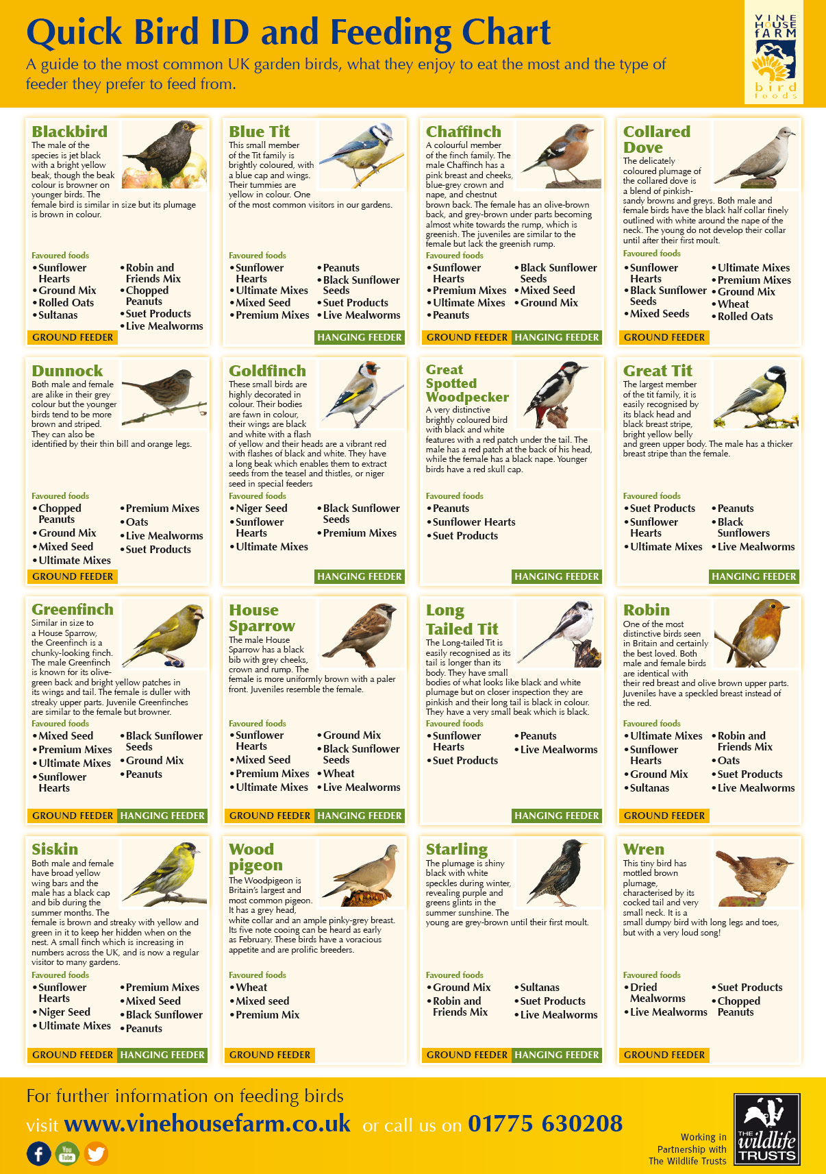 An Easy Guide to Bird Feeding - An Infographic from Infographics Showcase