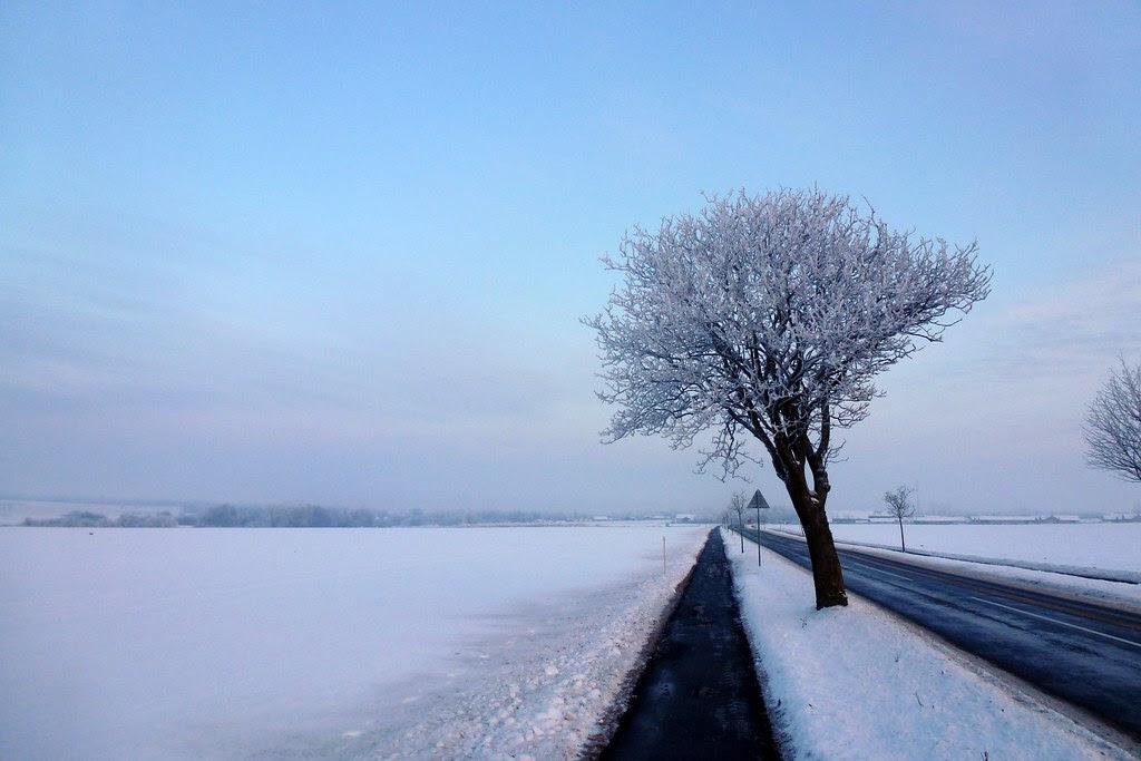 Vinter i Ramsømagle