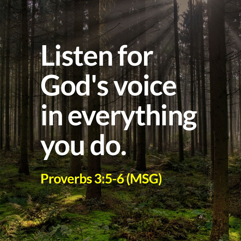 Proverbs 35 6 Msg Quote Christ Church