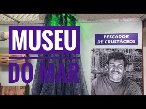 Conheça o Museu do Mar de Parnaíba - O maior museu do Piauí