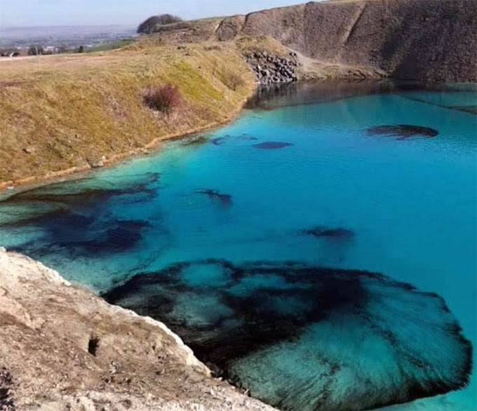 Μ. Βρετανία: Μια μικρή οικολογική καταστροφή εν όψει Κορονοϊού