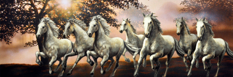 Trends For Full Hd 7 Horse Hd Wallpapers 1920x1080 Wallpaper