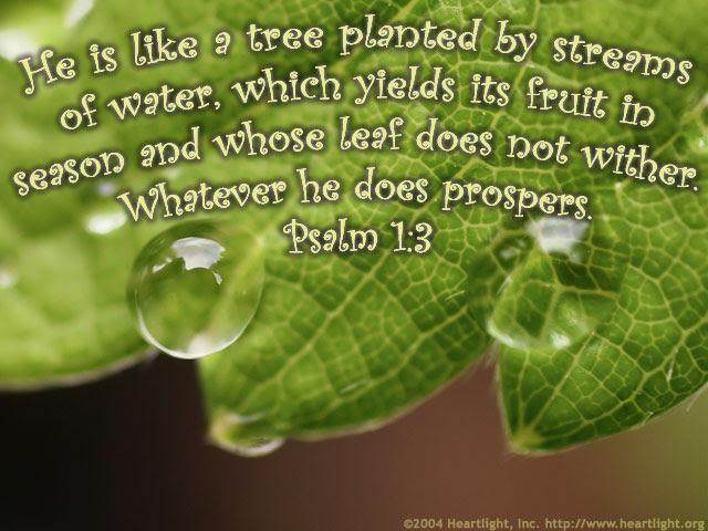 Psalm 1:3 (79 kb)