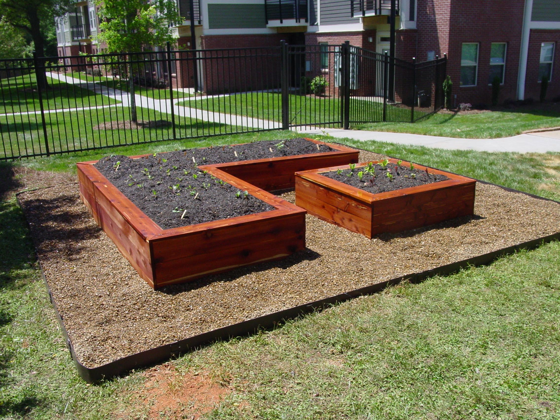 أعد التنظيم المالك التكتيكات Garden Bed Design Cabuildingbridges Org