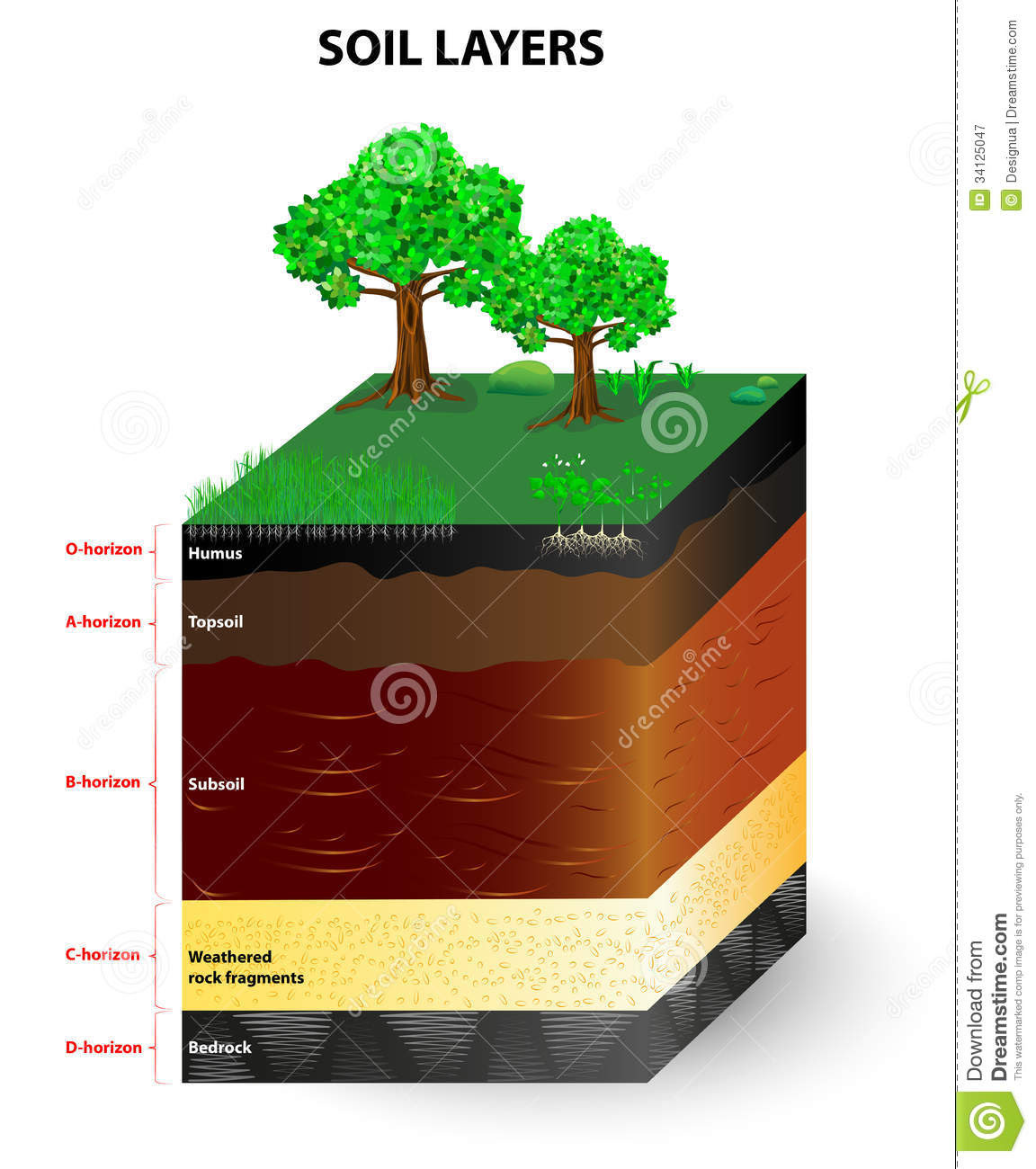 Layers Of A Soil Profile Royalty Free Stock Photography ...