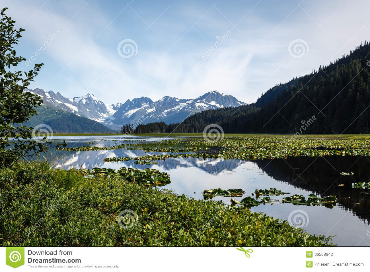 of snow capped mountains in pond in Alaskan wilderness in summer