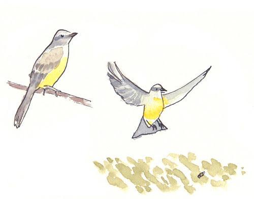 birdsnacks3_rev_w