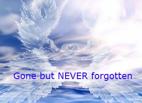 Gone But Never Forgotten Quote Quote Number 707747 Picture Quotes