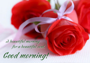 Beautiful Rose With Good Morning Message Greetings1