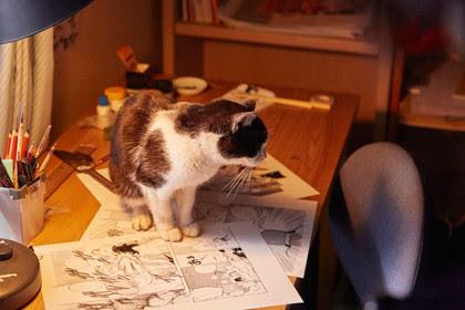 貓咪去哪兒/為什麼貓都叫不來(Cats Don't Come When You Call)劇照