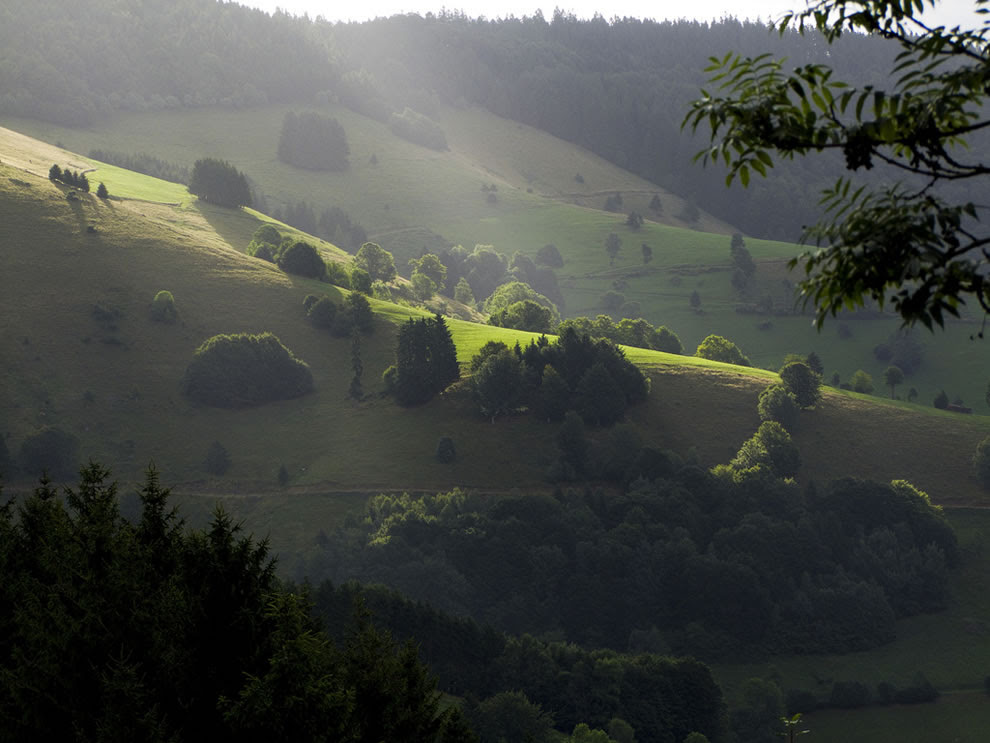 Morning light - start of a wonderful day black forest