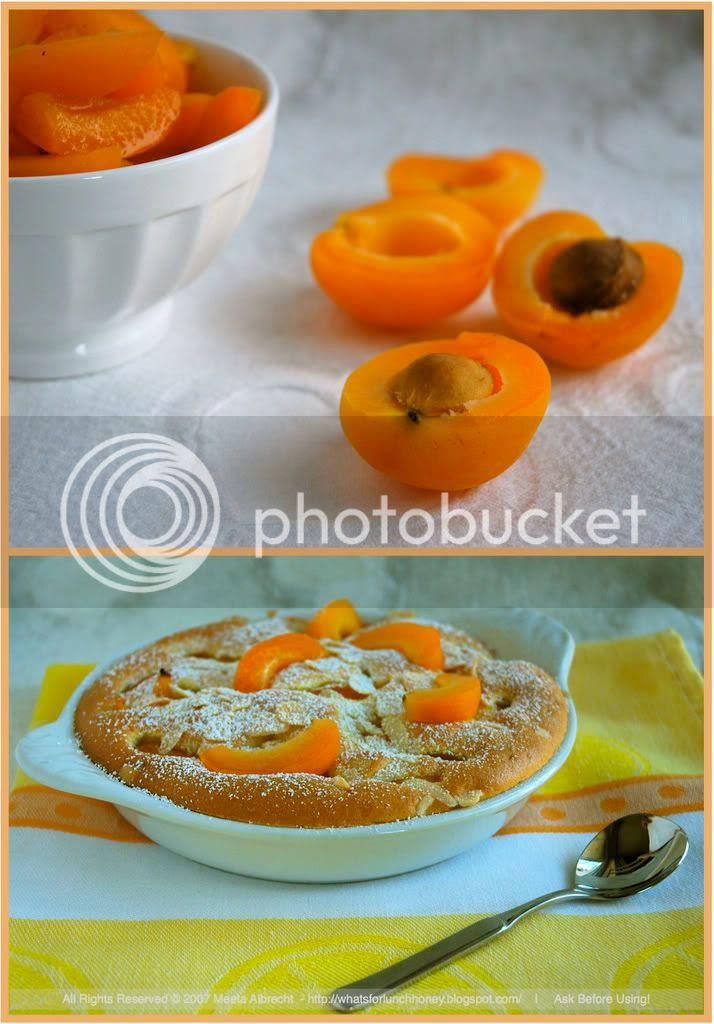 Apricot Clafoutis (06)