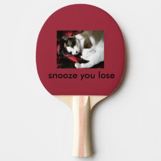 snowshoe kitty snoozing and dreaming ping pong paddle