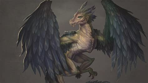 ymatecom phoenix dragon creature design procreate ti