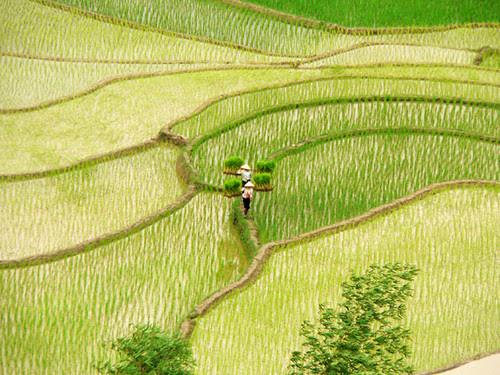 Yên Bái: đường và mảng por Toan-IMV