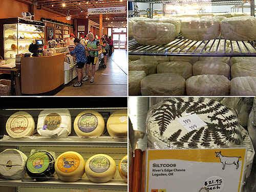 cheese.jpg (316976 bytes)