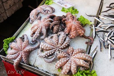 Octopus, Rialto Fish Market, Venice, Italy