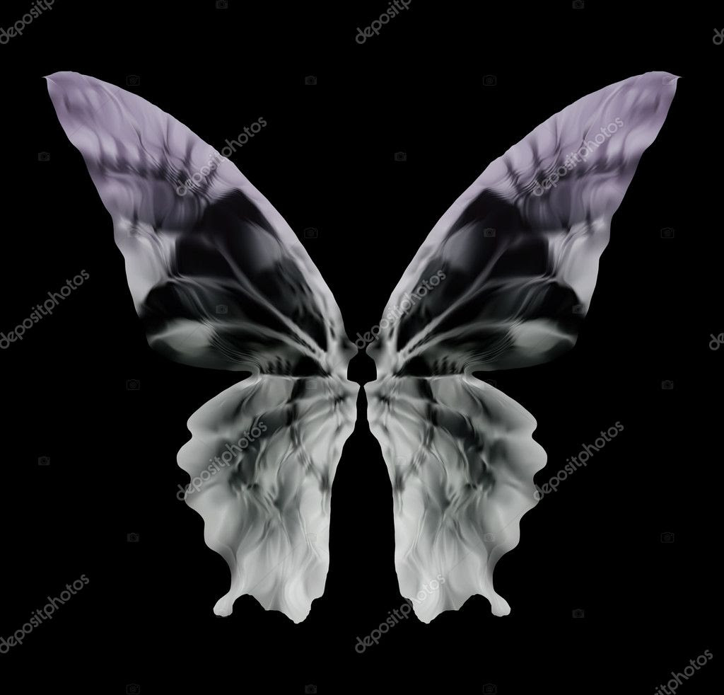 X-ray Butterfly Isolated on black. Vector — Stock Vector ...