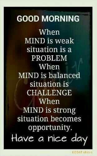 Quote Wisdom