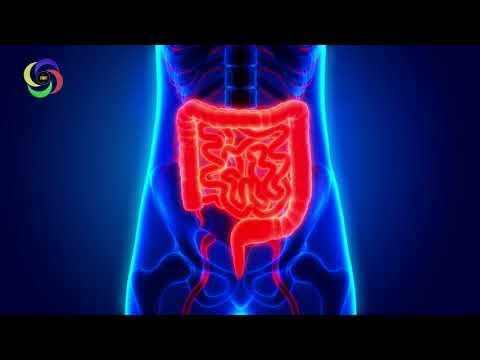 Constipation Relief Binaural Beats, Constipation Treatment, Constipation Relief Frequency 7Hz #RMBB