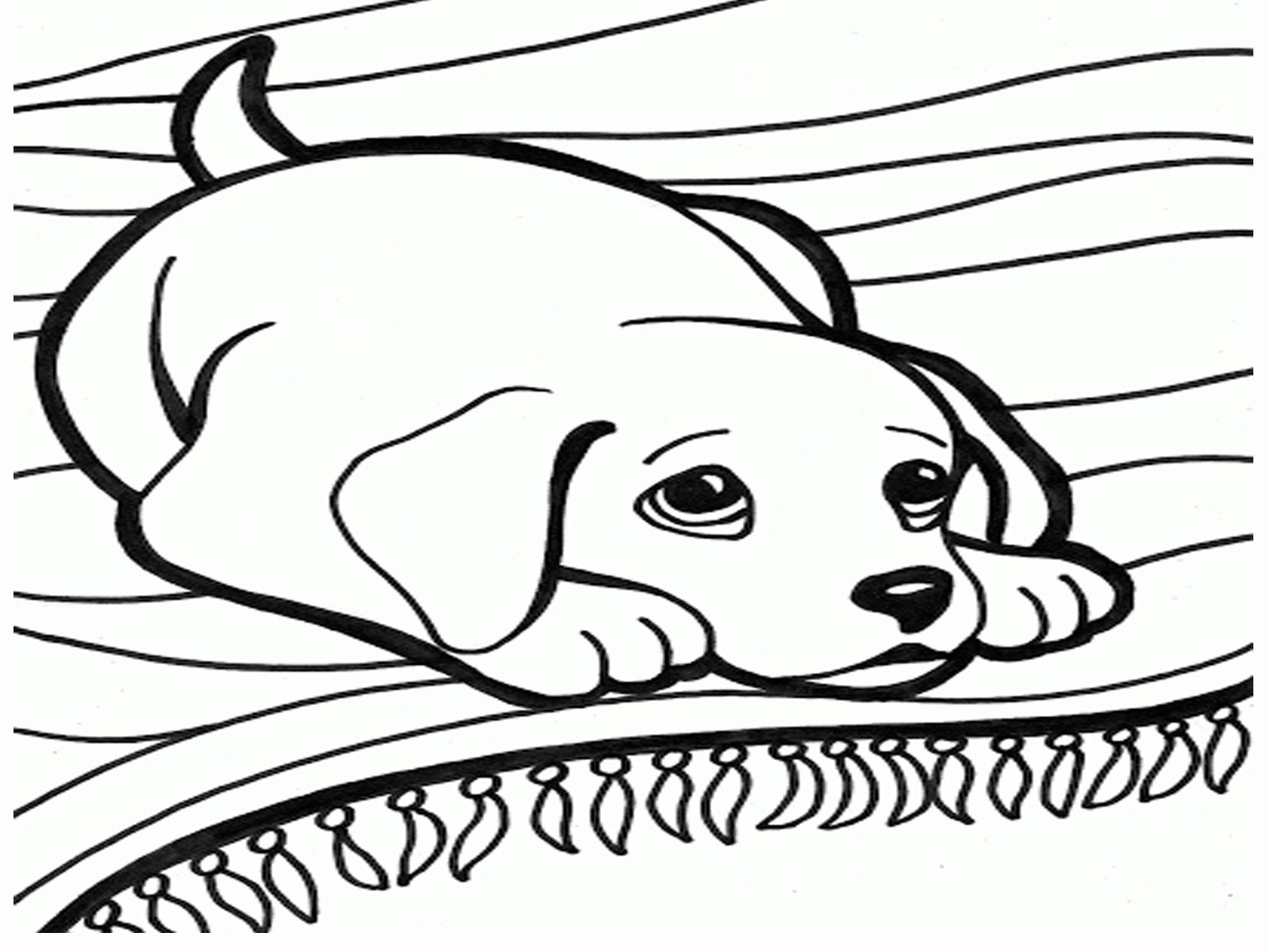 7200 Top Cute Coloring Pages Of Cats And Dogs For Free