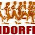 Benefícios da endorfina através da atividade física no combate a depressão e ansiedade