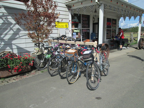 Most of our bikes in the rack