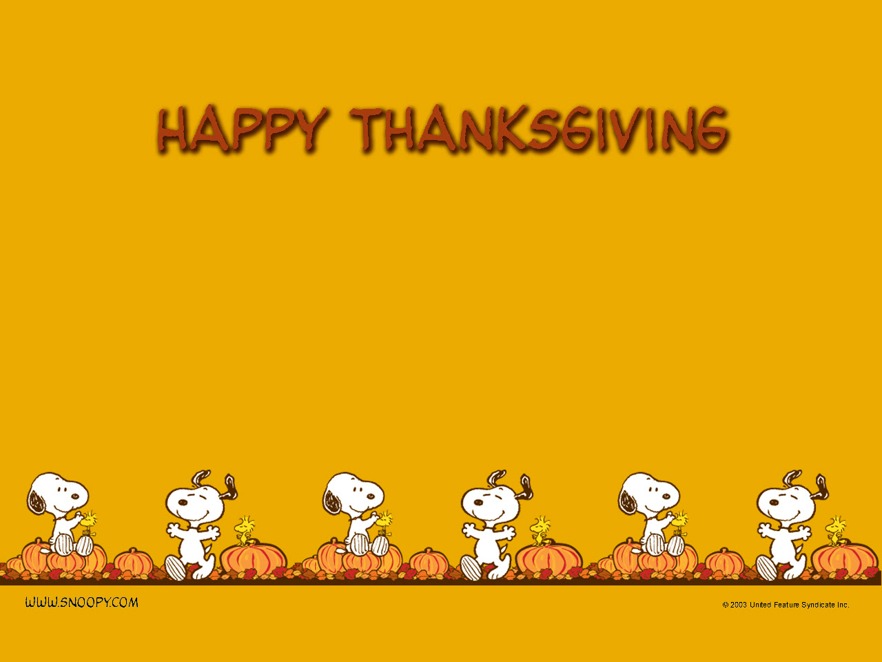 Peanuts Images Thanksgiving Hd Wallpaper And Background Photos 452773
