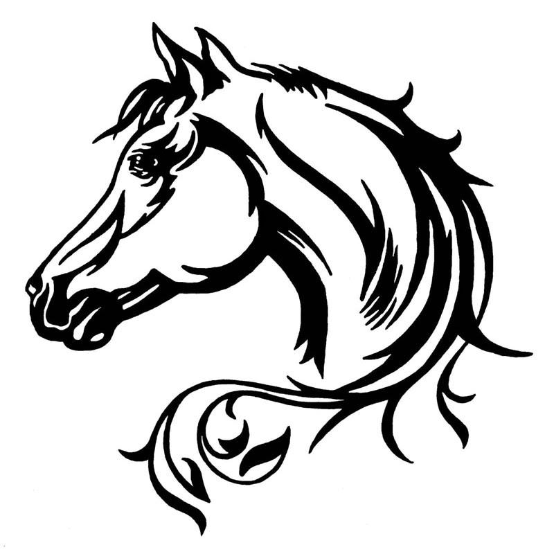 Aufkleber Fur Auto Pferdekopf Aufkleber Webshop Schweiz