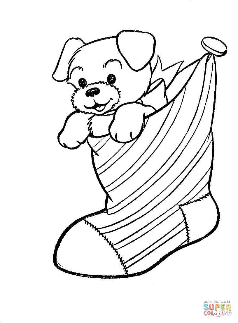 Dibujo De Cachorrito De Perro Dentro De Calcetin De Navidad Para