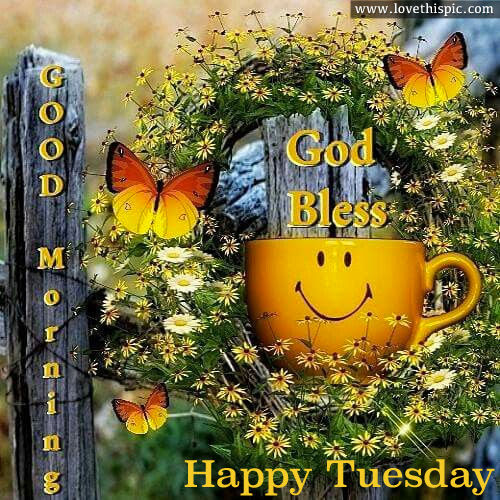 Good Morning God Bless Happy Tuesday Pictures Photos And Images