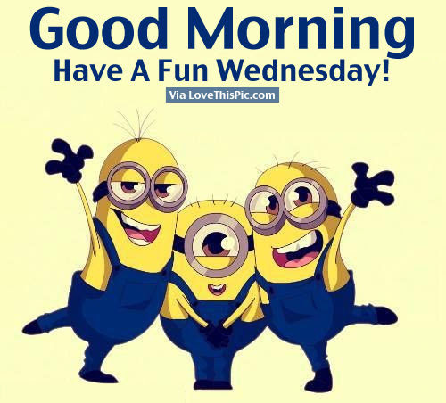 Good Morning Have A Fun Wednesday Pictures Photos And Images For