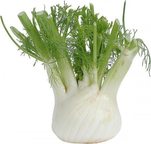 φινόκιο-το-λαχανικό-που-καταπολεμά-την-δυσπεψία