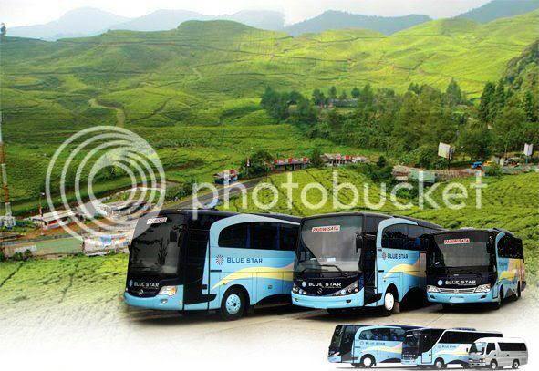 Armada Bus Bluestar