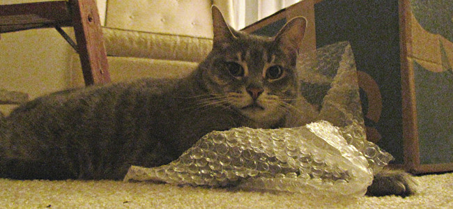 Norman Bubble Wrap