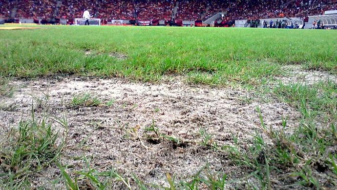 Gramado da Arena Amazônia apresenta novas falhas (Foto: Adeilson Albuquerque)