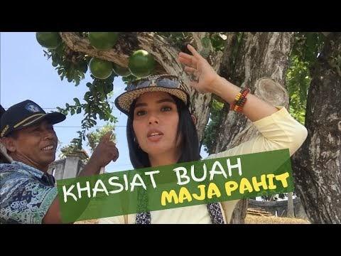 """Khasiat Buah """"Maja Pahit"""""""