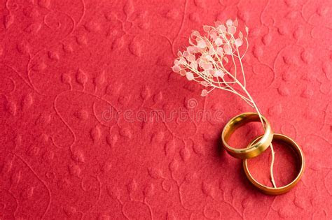 Stylish Red Engagement Background Stock Image   Image of