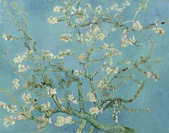 Vincent_van_Gogh_-_Almond_b
